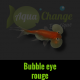 bubble eye rouge
