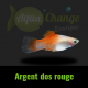 platy argent dos rouge