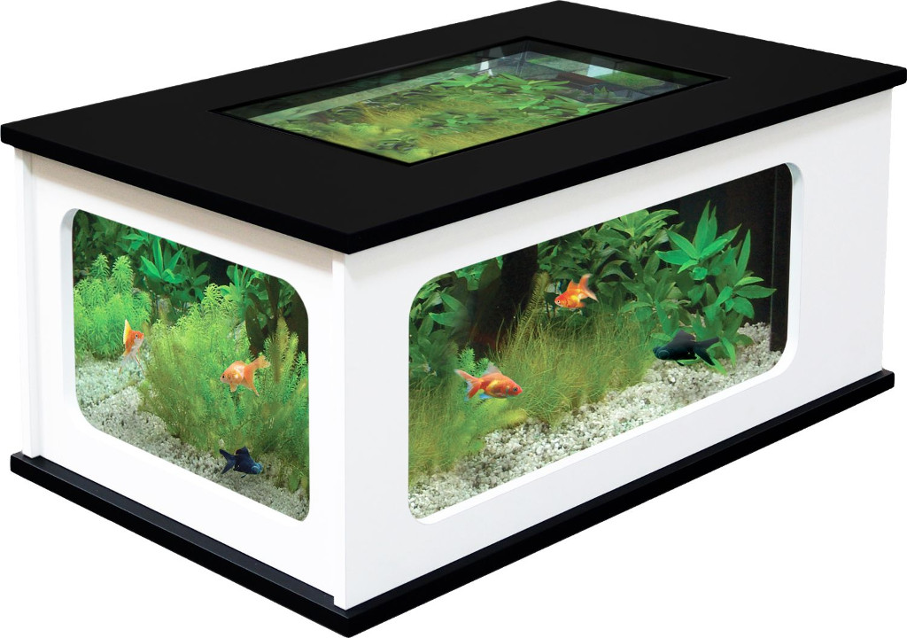 Aquarium table basse design - Table basse aquarium design ...
